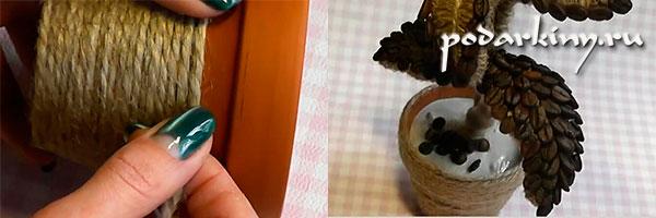 Обматываем горшок веревкой и сажаем цветок в раствор